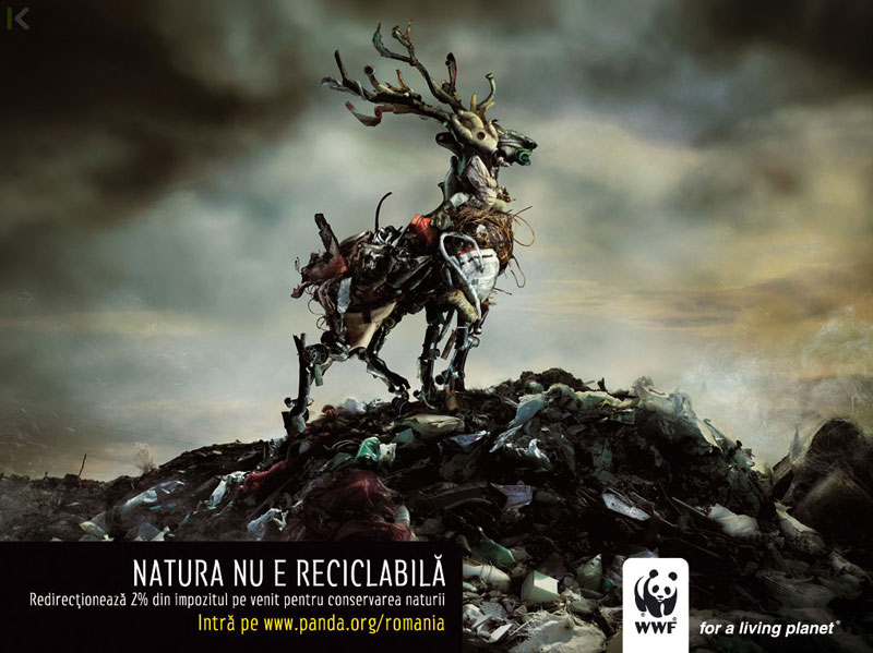 publicidad_contra_la_desforestacion_animal._marketing_en_san_sebastian_donostia.jpg